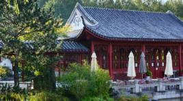 10 Jahre voller Blütenträume und asiatischer Kunst